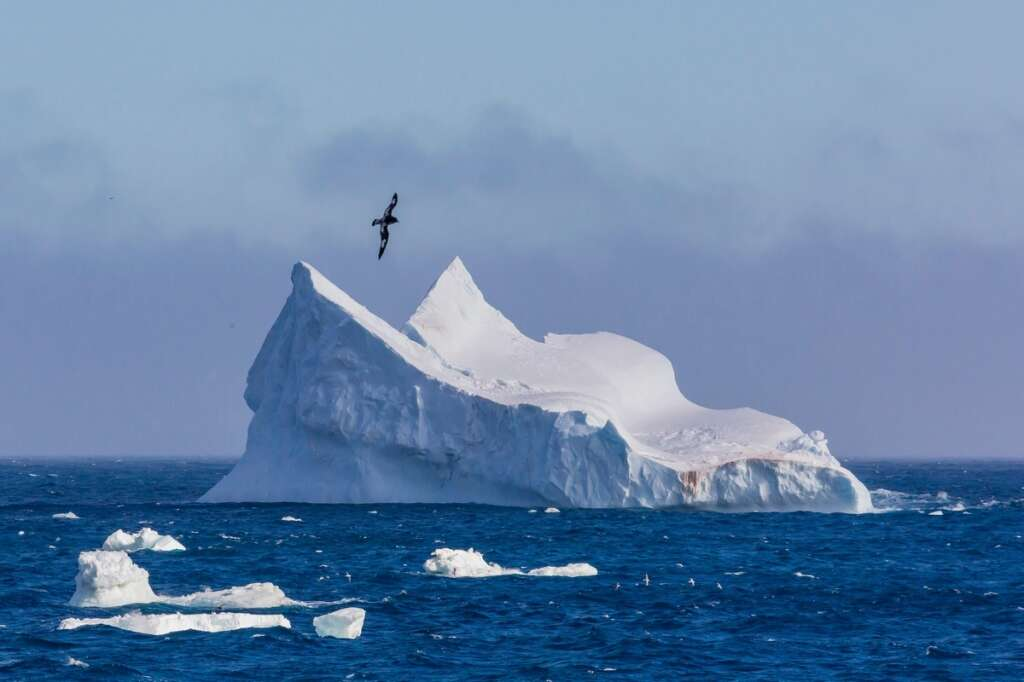 UAE to tow icebergs from Antarctica for new project