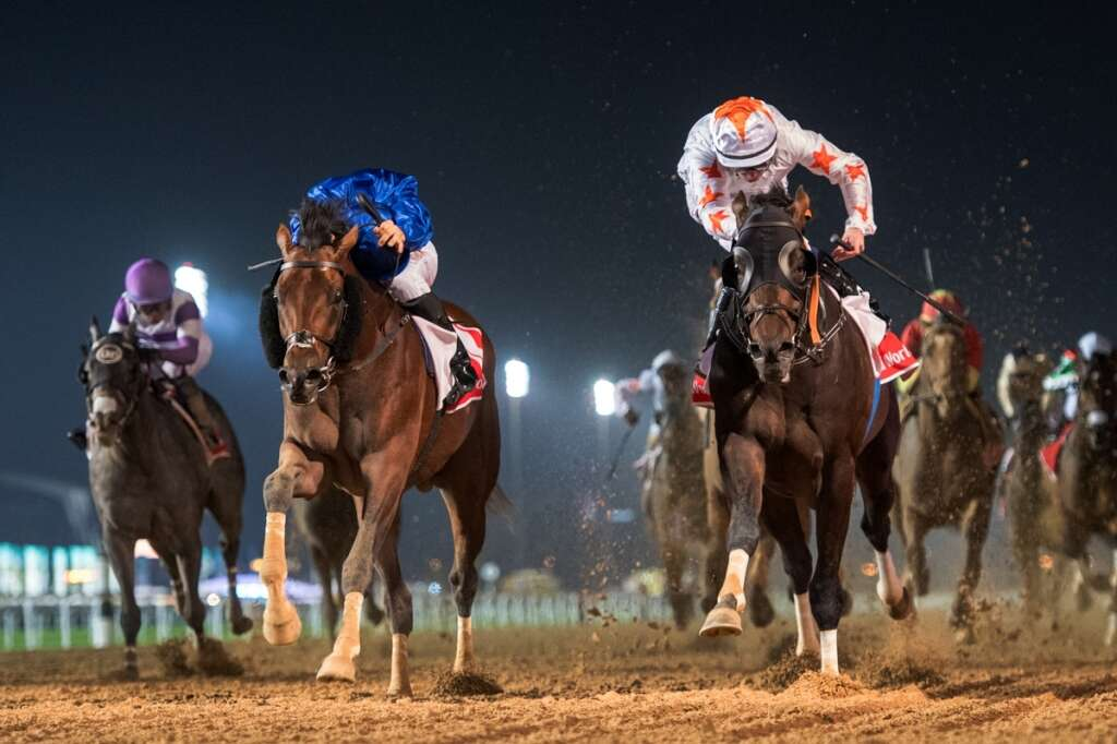Dubai World Cup nominations attract 902 horses from 21 nations