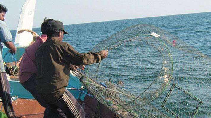 dibba, seize, fishing net, flouting rules