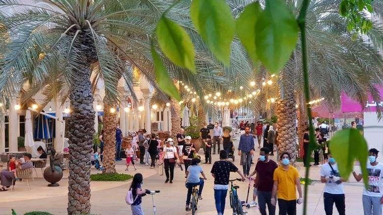 Combating, covid19, coronavirus, UAE seeks, residents solidarity, Covid-19 war