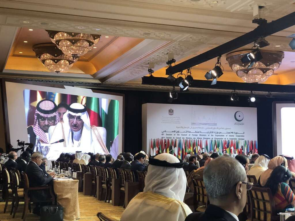 OIC ministers call for peace, stability in Muslim countries