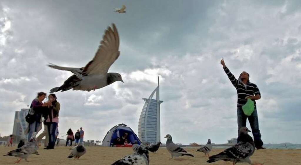 UAE weather: Temperatures dip to 3.8 °C