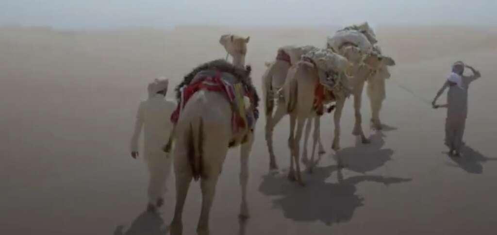 new tv show, uae, showcase, history, history of the emirates