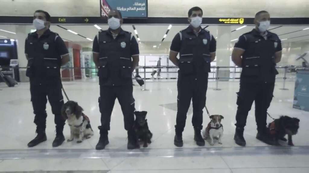 Saudi Customs, using, trained, police dogs, sniff out, coronavirus, like, uae, covid-19