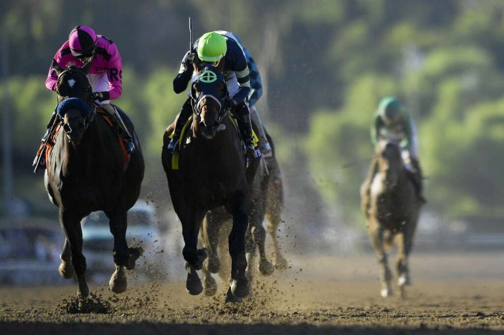 Breeders Cup: Storm the Court sprints to glory