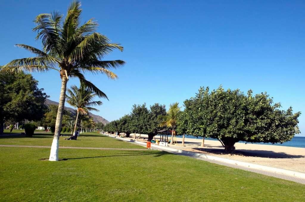 covid-19, coronavirus, reopening, Fujairah, UAE, parks, beaches