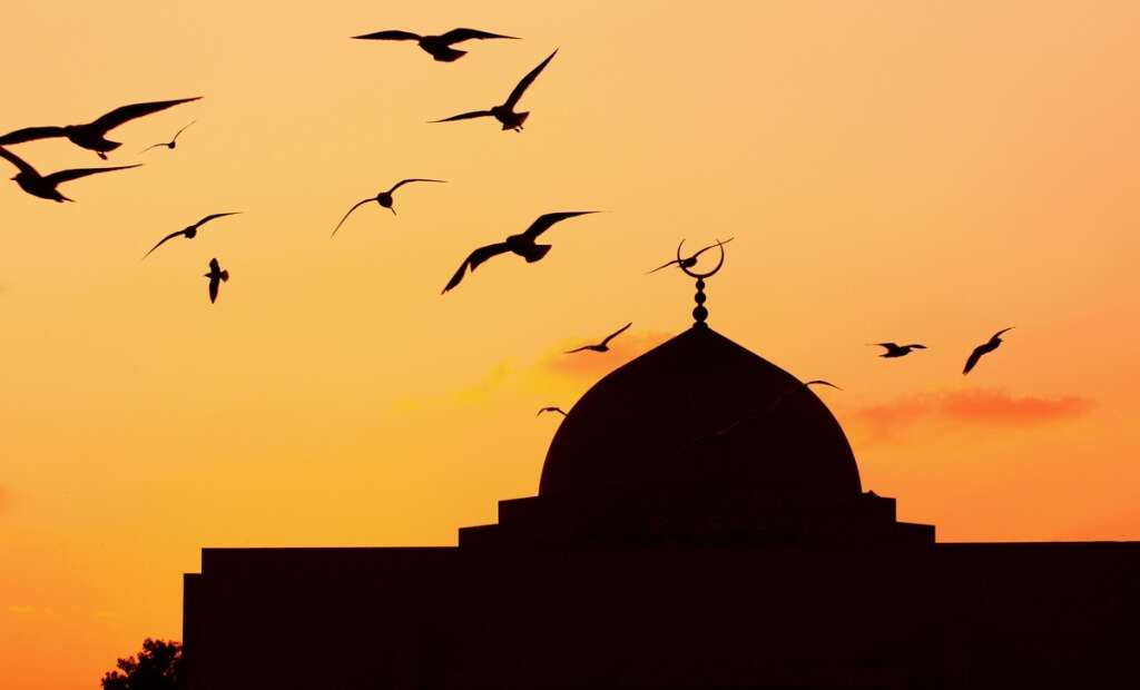 mosques, abu dhabi, al ain, al dhafra