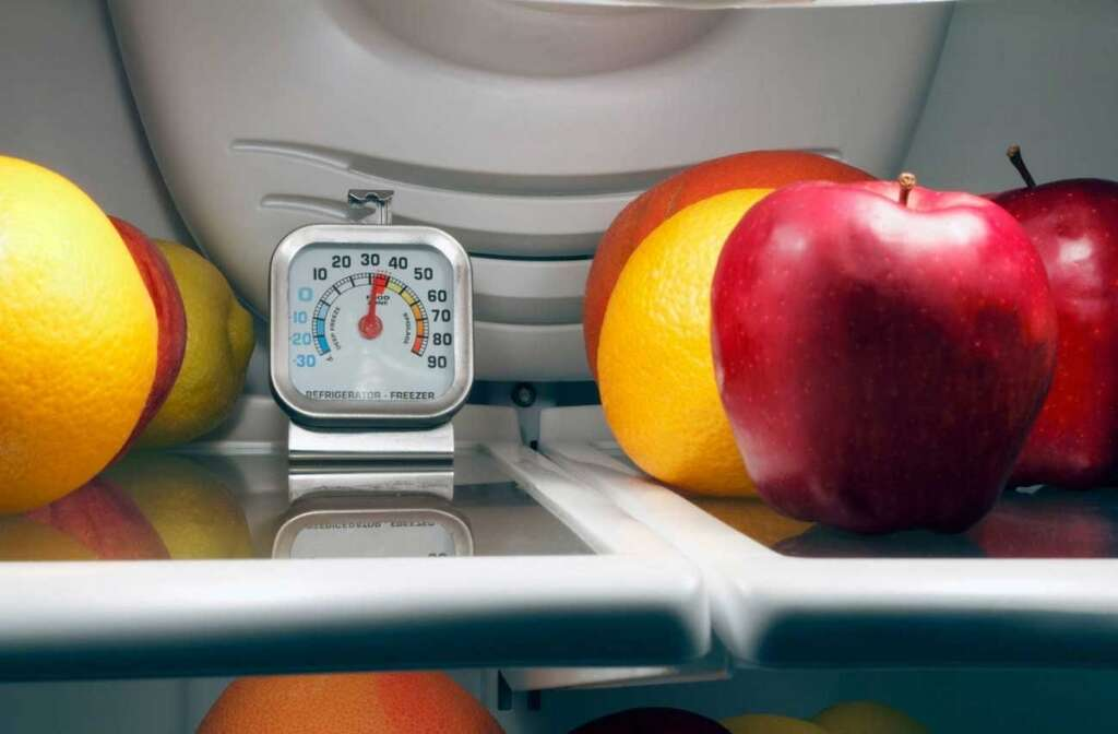 Civic bodies ramp up food safety crackdown in UAE - News