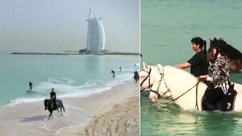 Video: Sheikh Mohammed's daughters perform 'horse surfing' stunts on