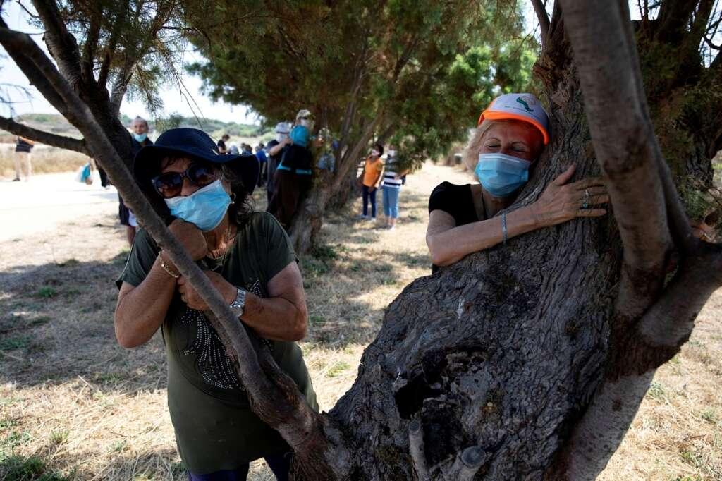 Israel, tree-hugging, coronavirus